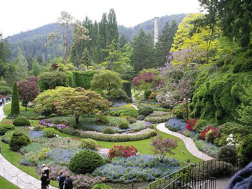kirstenbosch-gardens
